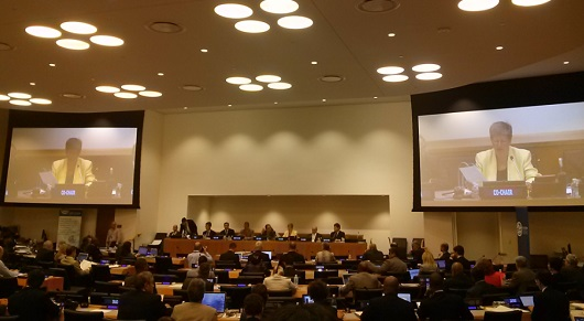 Attendance on the 4th UN-GGIM Committee of Experts (6-8 August, 2014)
